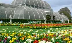 Jardines de Kew